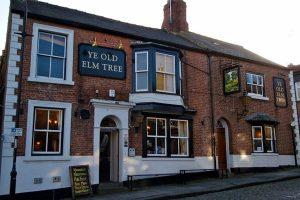 Ye Old Elm Tree